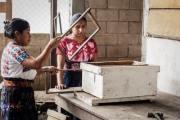 MANUELA Y LA APICULTURA | De Mieles y Abejas