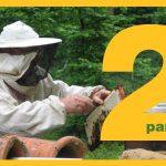 Como iniciarse en la apicultura parte 2