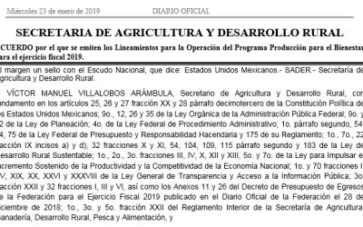 Lineamientos para la Operación del Programa Producción para el Bienestar 2019 SADER