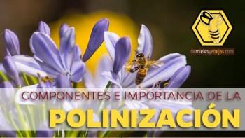 P-polinizacion