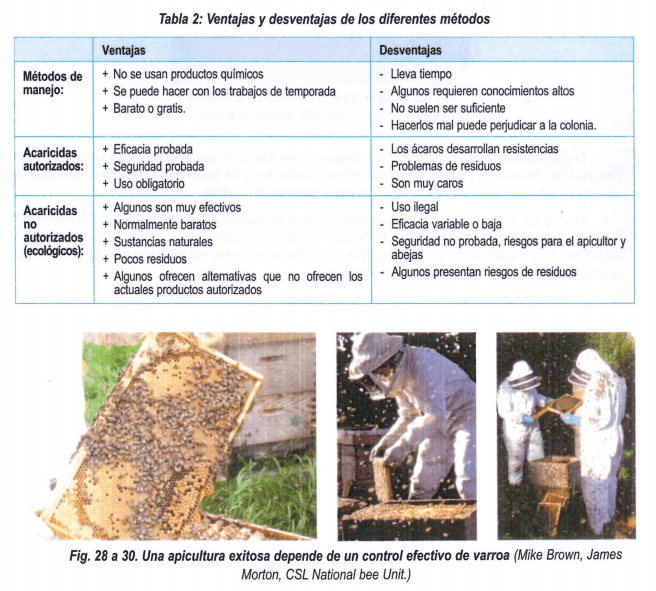 Ventajas y desventajas de los diferentes métodos para el control de la varroa.