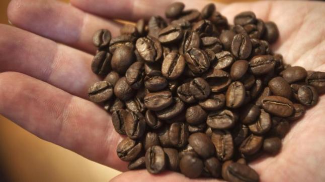 ألماني يبتكر آلة لتحويل البن إلى قهوة طازجة