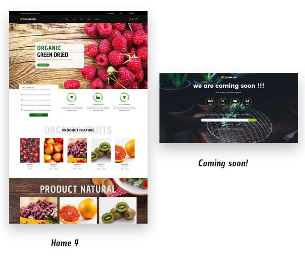 Organic Orgafresh – Organic & Food WooCommerce WordPress Theme - 3