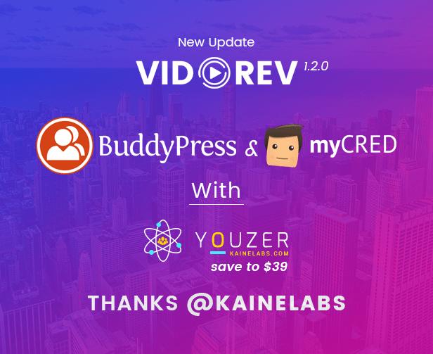 VidoRev - Video WordPress Theme - 10