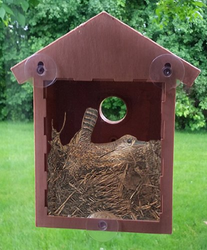 see through window mirrored bird house reviews by admin on november