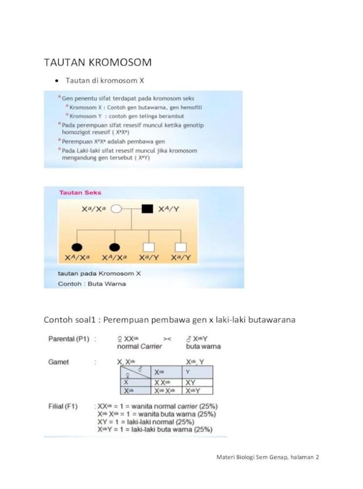 Translokasi Resiprok : translokasi, resiprok, NILAI, PINDAH, SILANG, MATERI, Aberasi, Kromosom, (mutasi, Kromosom), Adalah, Perubahan, Terjadi, Document]
