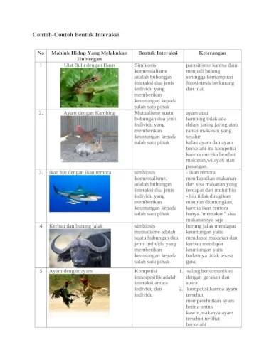 Ikan Hiu Dan Ikan Remora : remora, Jenis, Simbiosis, [DOCX, Document]