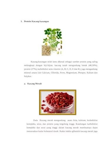 Makanan Yang Mengandung Protein Nabati : makanan, mengandung, protein, nabati, PROTEIN, NABATI, KEDELAI, GANDUM, Document]