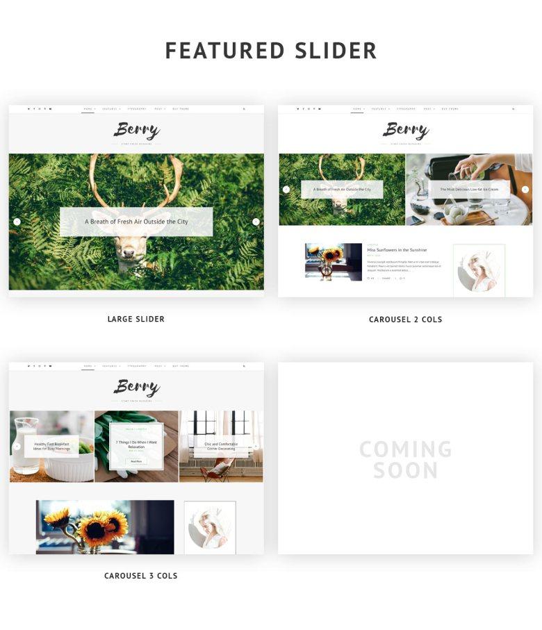 Featured Slider Styles