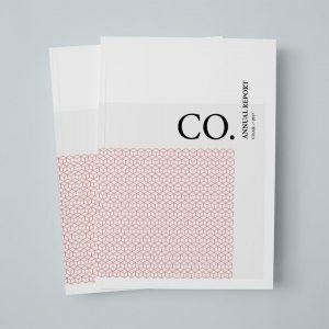 CO.-Annual-Report