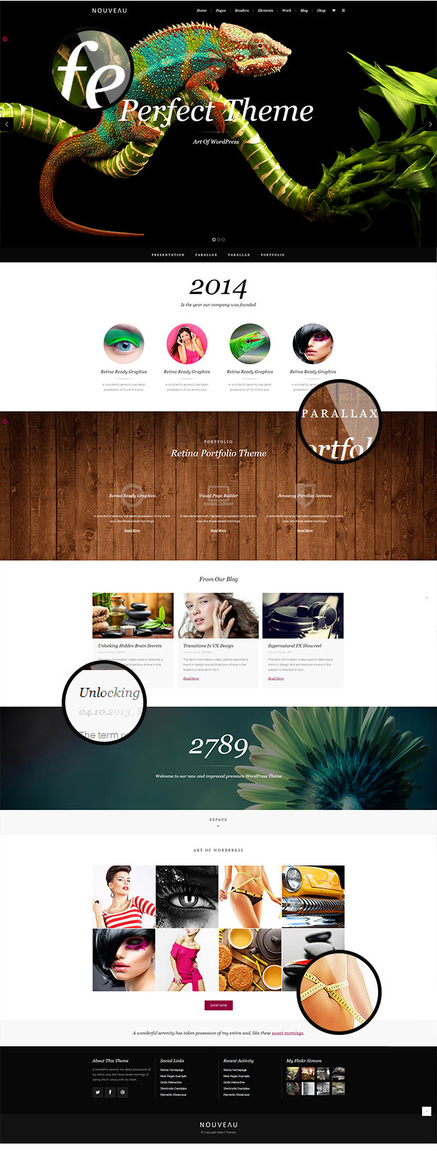 Nouveau - Multi-Purpose Retina WordPress Theme - 3