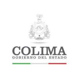 ASOCIACION DE USUARIOS DEL MODULO PEÑITAS DEL DISTRITO DE RIEGO No. 053 DEL ESTADO DE COLIMA A.C.  (2009)