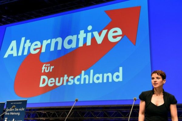 http://www.dw.com/en/germanys-right-wing-afd-is-guarantor-of-jewish-life-petry-says/a-38317727