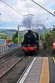 Train steam Dalreoch by John Kelenfoldi
