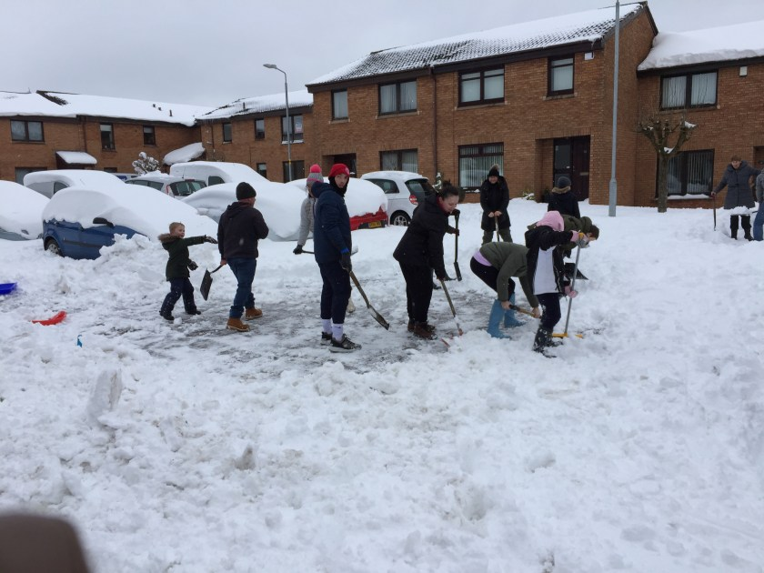 bernie in the snow 6