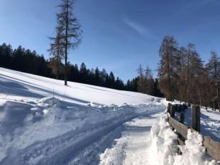 ski 7.jpg 8