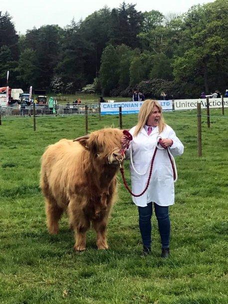 Endrick Fiona Burns bull class.jpg Lewis of Tippetcraig