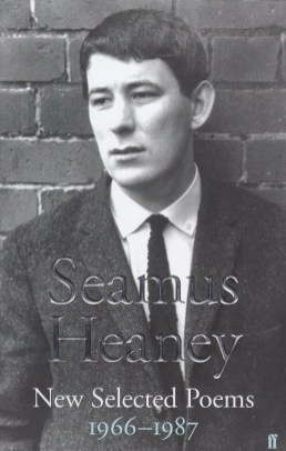 Heaney Seamus Selected Poems book