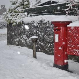 snowdec62010 4