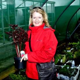 Gardening - Bernie Heaney at Craoigend Nursery near Cardross