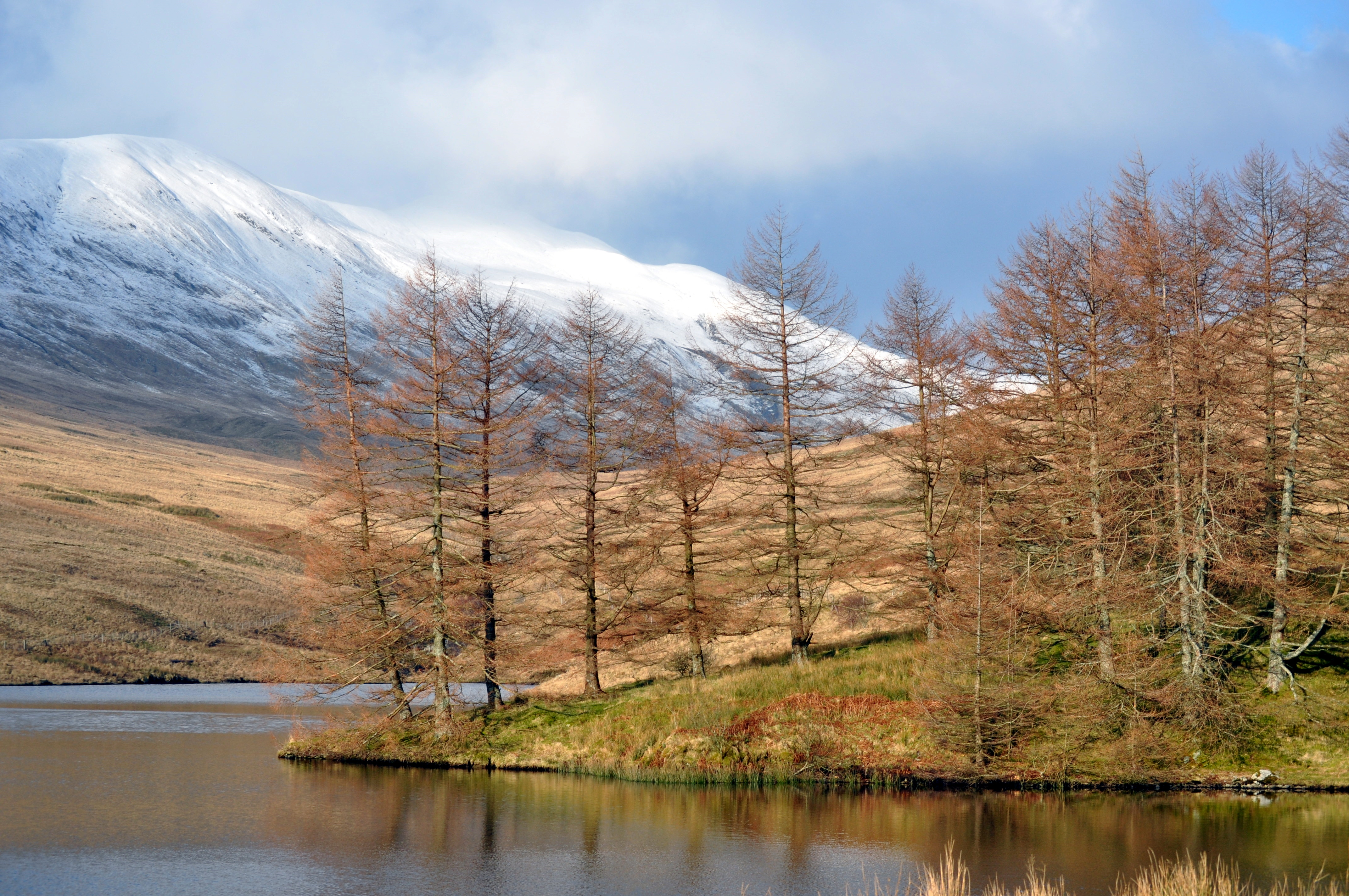 WATER: Nearly 50 Scottish Water sites 'unsatisfactory', finds green watchdog