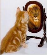 Auto-estima