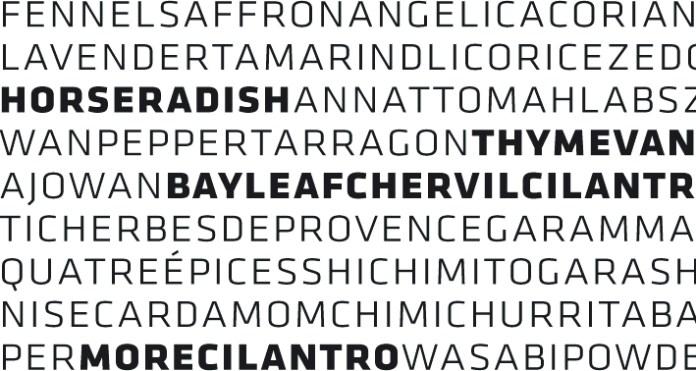 Klavika Font Family