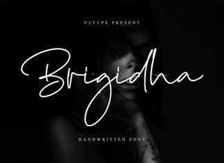 Brigidha Font