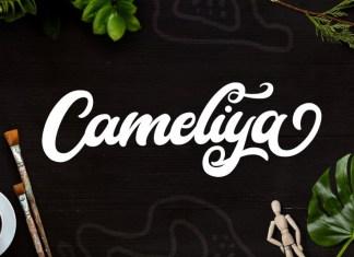 Cameliya Font