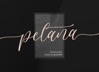 Pelana Font