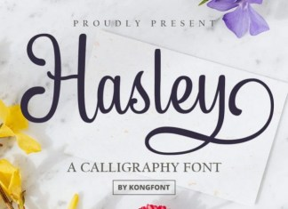 Hasley Font
