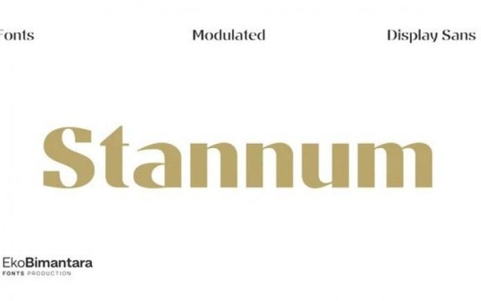 Stannum Font