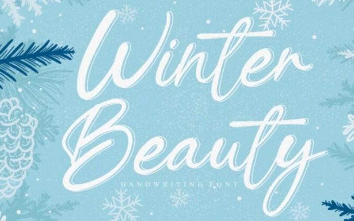 Winter Beauty Font