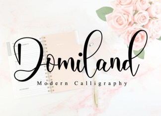 Domiland Font
