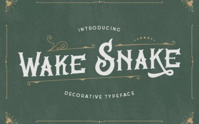 Wake Snake Font