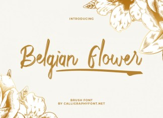 Belgian Flower Brush Font