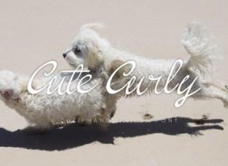 Cute Curly Script Font