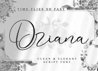 Driana Brideth Calligraphy Font