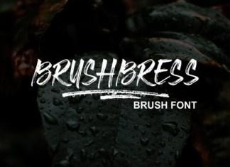 Brushbress Brush Font