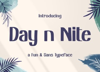 Day n Nite Display Font