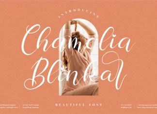 Chamelia Blinkar Script Font