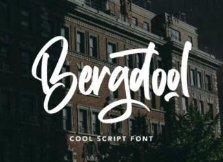 Bergdool Script Font