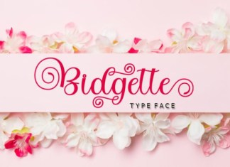 Bitgette Calligraphy Font