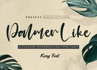 Palmer Like Script Font