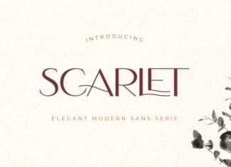 Scarlet Sans Serif Font
