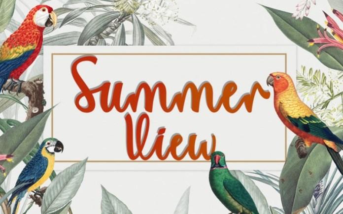Summer View Script Font