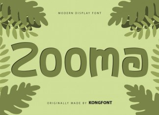 Zooma Display Font
