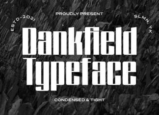 Dankfield Display Font