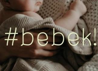 Bebek Display Font