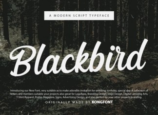 Blackbird Script Font